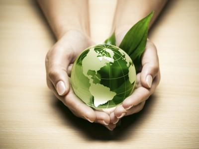 Socially Responsible Investing: Aligning Your Money with Your Values